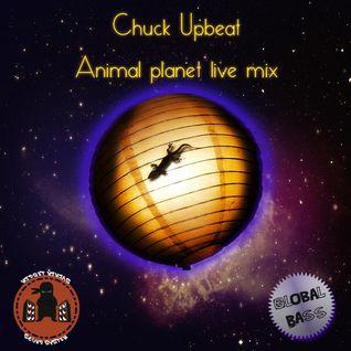 Chuck Upbeat - Animal Planet (Live Mix)