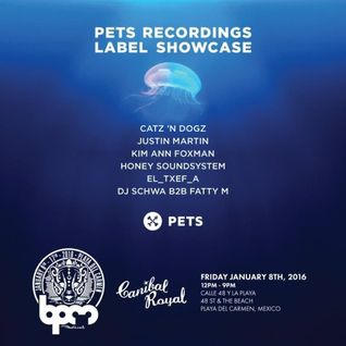 Catz 'N Dogz - live at Pets Recordings, Canibal Royal (The BPM 2016, Mexico) - 08-Jan-2015