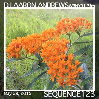 Sequence 123-DJAaronAndrews-May 29, 2015