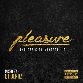 PLEASURE 1.0  Mixed By (DJ Ulahz)