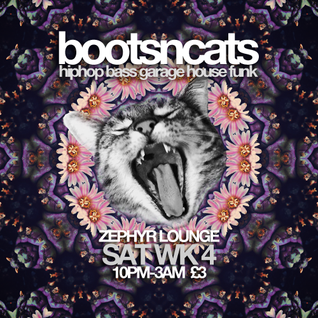 Bootsncats #006 - Kimel