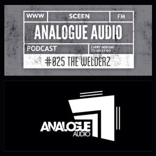 The Welderz_Analogue Audio Podcast_June 2014