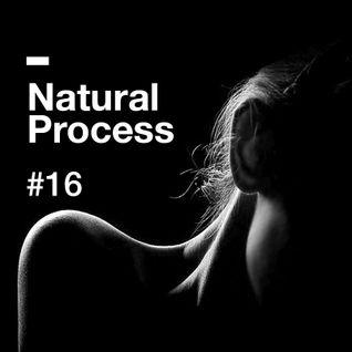 Natural Process #16