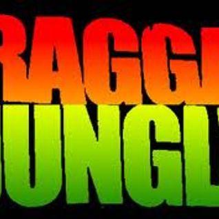 départ pour la jungle - mix ragga jungle/drum
