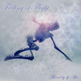 Feeling of Flight