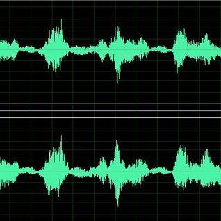 RUIDO DE FONDO MARZO 2009 CHICAGO (WRTE 90.5 FM)