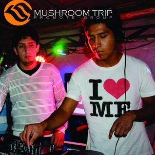 Mix Discoteca - Dj Leonardo Lopez [2013]