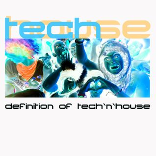 Definition of Tech`n`House