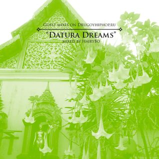 Guest Mixes on Drugoyhiphop.ru: Datura Dreams by HairyBo