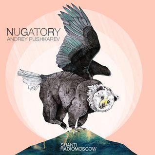 Andrey Pushkarev - Shanti Radio: Nugatory