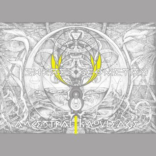 sacred geometry live mix 2013
