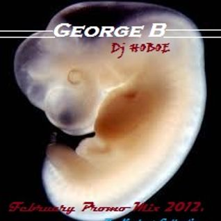 George_B_Dj Hoboe_February Promo Mix 2012.
