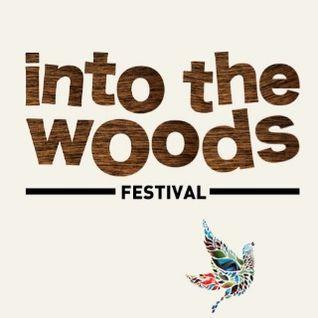 Stan B (DJ Set) @ Into the Woods After, De Kelder, Amersfoort (08-09-2012)