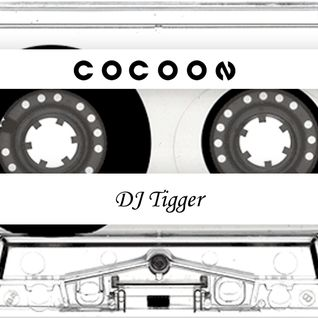 DJ Tigger  - R&B Mix - For The Ladies
