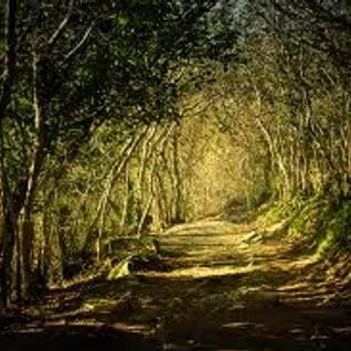Hidden Paths Vol. 001 (May 2012 Mix)