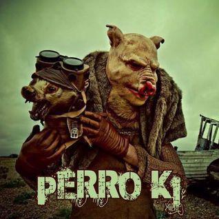 Perro Ki // Tate Pillo