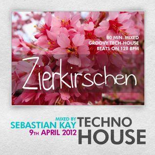 Sebastian Kay - Zierkirschen (Tech-House rec. 09.04.2012)