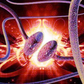 synaptogenesis vi - ecphoria