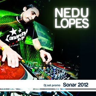 Dj Nedu Lupes - Sonar SP 2012