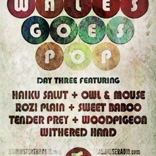 TWR #198 w/c 07.12.14, WALES GOES POP 2014 Day 3