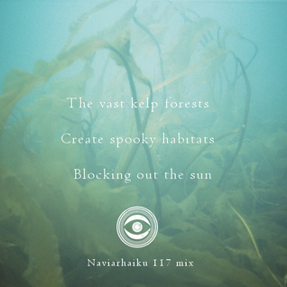 NH117: The vast kelp forests  / Create spooky habitats / Blocking out the sun
