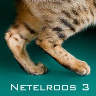 netelroos III