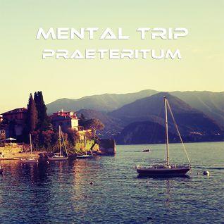 Mental Trip Part 1 - Praeteritum