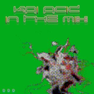 KAi ACiD - 2010 Various Artists In The Mix 4
