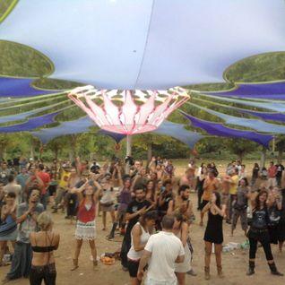 CHIK'M_CONNECTION FESTIVAL 2013 [PSYCHEDELIC PROGRESSIVE DJ SET]