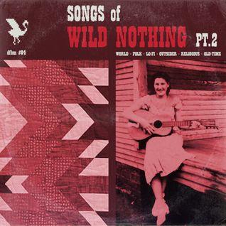 dfbm #84 - Songs of Wild Nothing Pt. II