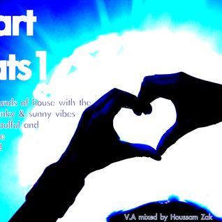 HeartBeats 1 - Houssam Zak - Back2House - YoungFreshNWild Podcast