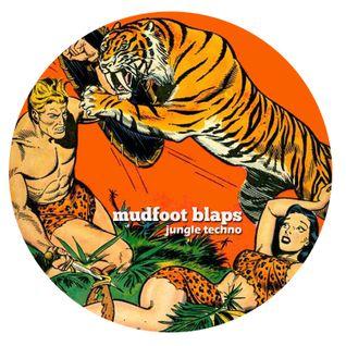 Mudfoot Blaps - Jungle Techno