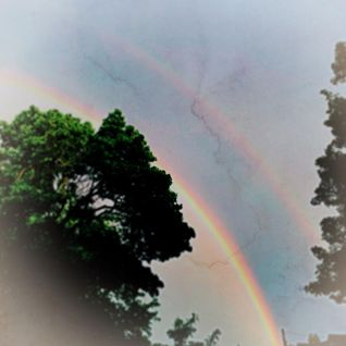 anticipating rainbows