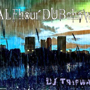Half Hour Dub-Shower - DJ Tripwave (Fall 2010 Dubstep DJ Mix)
