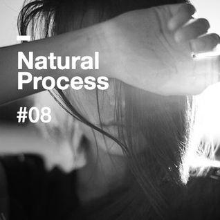 Natural Process #08