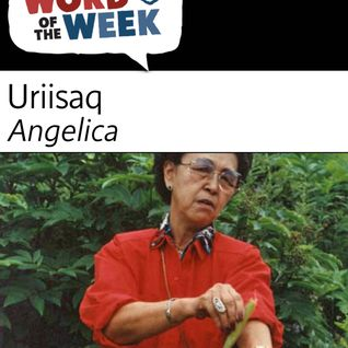 Season 19, Lesson 8, Angelica