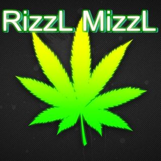 RizzL MizzL - 11.07.2013 - mixed by Miss Hardtech