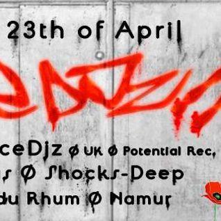 Schocks-Deep @ Festivibe with Space Dj'z