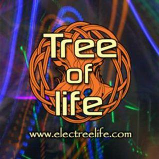 ".:: Special 5h ""Singularity"" set ::. .::Tree of Life Festival 28.6.-03.7. 2012 Turkey::. (Part 1)"