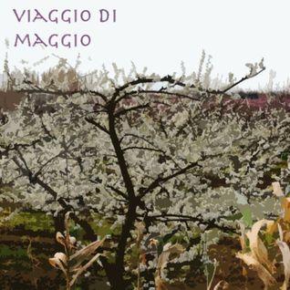 Daniele Palmas - Viaggio di Maggio 2012