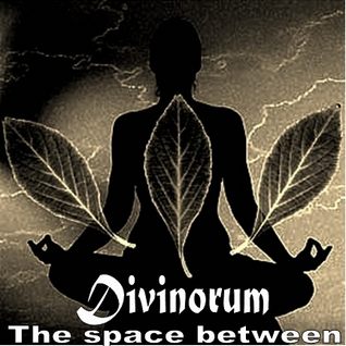 Divinorum - The space between