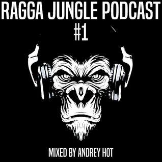 Ragga Jungle Podcast #1 mixed by Andrey HoT