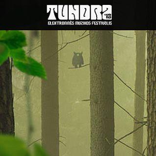 6P3S live @ Tundra 2013 (DUB)