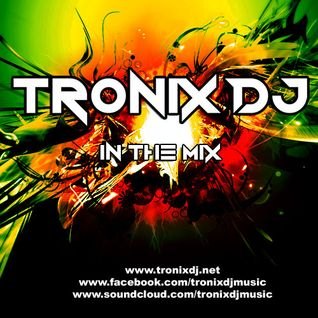 Tronix DJ - Power Dance #13