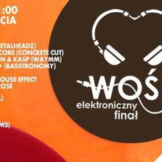 KD3 - Live @ Elektroniczny Finał WOŚP (1500m2 12.01.2014)