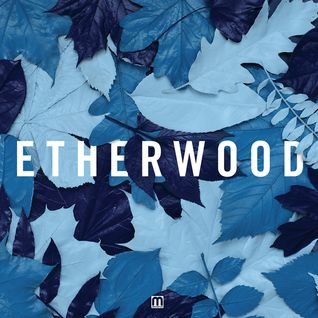 Etherwood (Hospital Records, Med School Music) @ Blue Leaves Showcase (21.09.2015)