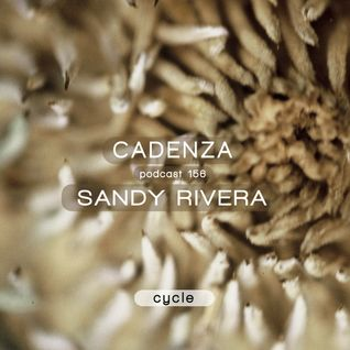 Cadenza Podcast | 156 - Sandy Rivera (Cycle)