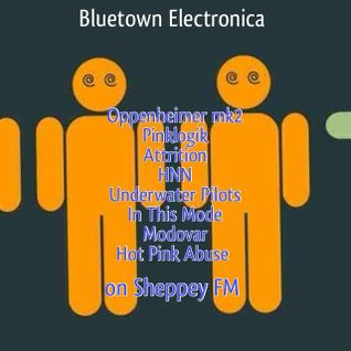 Bluetown Electronica live show 19-1-14