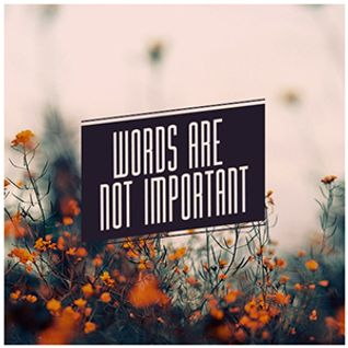 Words are not Important
