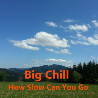 Scheibosan @ Gomde Summerparty 2015 - Big Chill (How slow can U go)